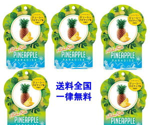 アロハバス パイナップル 40g1包×5包【全国一律送料無料】国産 紀陽除虫菊