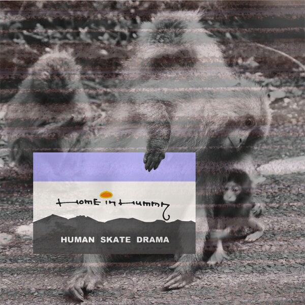【IN HUMAN】HOME IN HUMAN 【スケートボード】【インヒューマン】【映像/DVD】