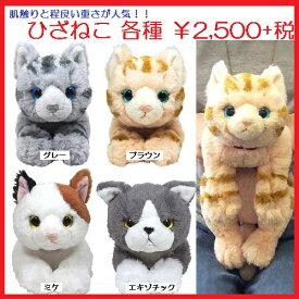 【ぬいぐるみ】【猫】ひざねこ S