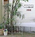 アイアン トレリス2枚組 高さ147タイプ トレリス ガーデン シンプル 北欧 インテリア 家具 おしゃれ カフェ おすすめ …