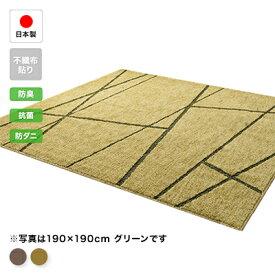 アース防ダニラグ【オノール】3帖用 190×240cm【送料無料】