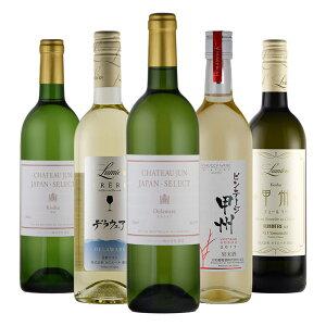 送料無料 日本 ワイン 5本 セット 白ワイン 甲州 デラウェア 山梨 辛口 甘口 国産