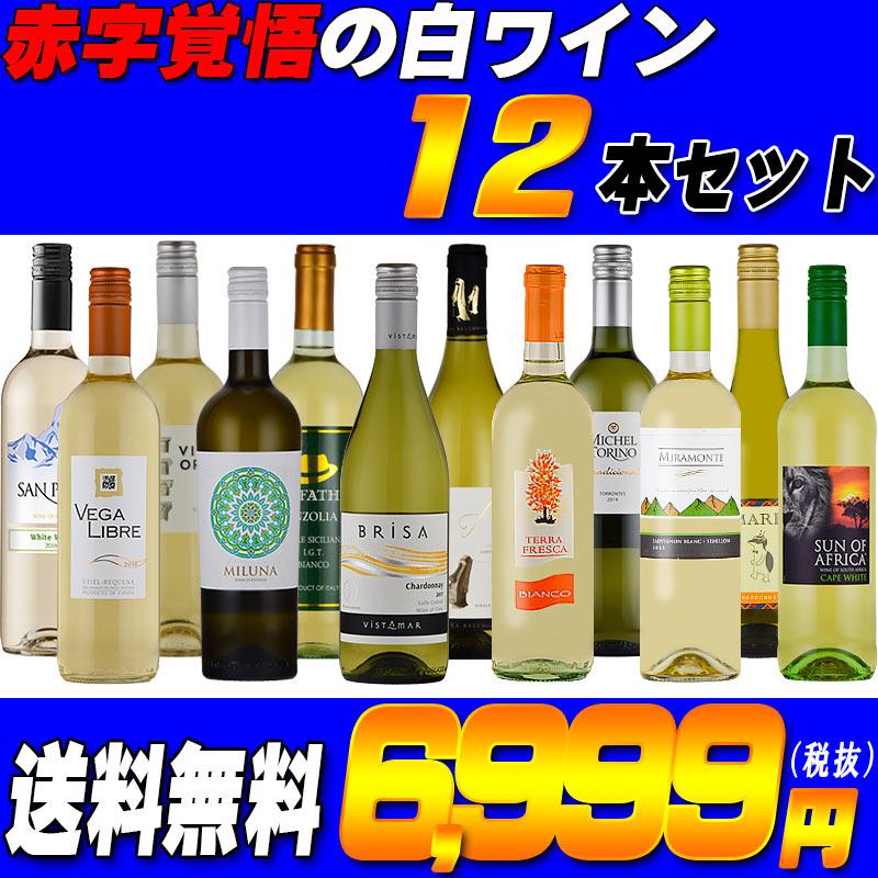 赤字覚悟の 白 ワイン セット 12本 5ヶ国飲み比べ イタリア スペイン 南アフリカ チリ