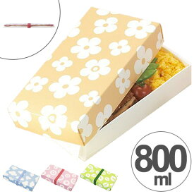 折り畳みランチボックス 一段 800ml ネイチャー 日本製 スリム ( お弁当箱 ランチボックス サンドイッチケース 折りたたみ式 弁当箱 コンパクト 電子レンジ対応 ラッピングボックス ギフトボックス 持ち帰り箱 )【39ショップ】