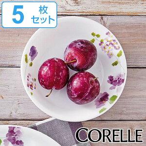 プレート 17cm 深皿 コレール CORELLE 皿 食器 バイオレットミスト 同色5枚セット ( お皿 深い 白 食洗機対応 電子レンジ対応 中皿 取り皿 オーブン対応 耐熱 白い食器 平皿 丸皿 ケーキ サラダ
