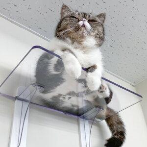 キャットステップ Cat Steps 壁 ワイドステップ 透明 クリア キャットウォーク ( 送料無料 キャットタワー ネコ ステップ ねこ 猫 壁面取り付け 運動 おもちゃ 遊び 省スペース DIY diy 棚 おしゃ