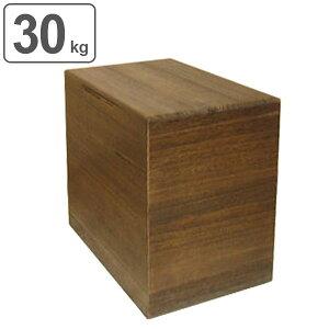 米びつ 桐製 30kg 焼桐 ( 送料無料 米櫃 ライスボックス ライスストッカー 30kg用 30キロ 桐 和風 桐製米びつ お米 収納 キッチン収納 ストッカー 保存 キッチン こめびつ ) 【39ショップ】
