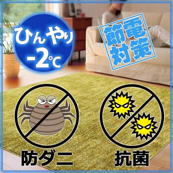 ラグ・カーペット・絨毯・マット冷感ラグで省エネ対策! −2度AQUAラグ クールストリームGN(グリーン) 190×190cm