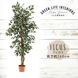 【送料無料_d】人工観葉植物 大型 フェイクグリーン インテリア 造花 フィカス 160cm