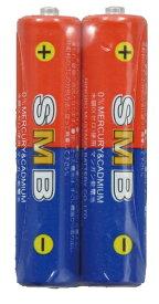 アーテック 理科教材電池 単4(2本組) 69496
