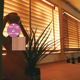 東京ブラインド 木製ブラインド こかげ ベネチアウッド50 智頭杉/蜜ロウワックス塗装 高さ2610〜2800mm 幅1010〜1200mm