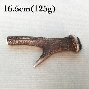 富士山の鹿角 16.5cm(125g)[国産/無添加/天然素材/鹿の角/デンタル/歯磨き/長持ち/おもちゃ/ガム/中型犬]