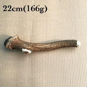 富士山の鹿角 22cm(166g)[国産/無添加/天然素材/鹿の角/デンタル/歯磨き/長持ち/おもちゃ/ガム/大型犬]