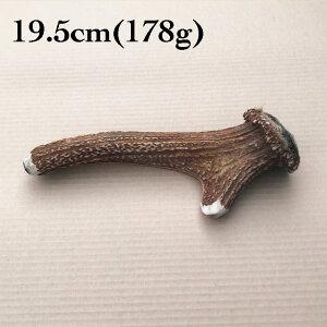 富士山の鹿角 19.5cm(178g)[国産/無添加/天然素材/鹿の角/デンタル/歯磨き/長持ち/おもちゃ/ガム/大型犬]