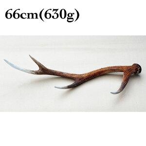 富士山の鹿角 66cm(630g)[国産/無添加/天然素材/鹿の角/デンタル/歯磨き/長持ち/おもちゃ/ガム/大型犬]