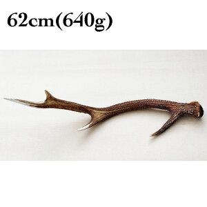 富士山の鹿角 62cm(640g)[国産/無添加/天然素材/鹿の角/デンタル/歯磨き/長持ち/おもちゃ/ガム/大型犬]