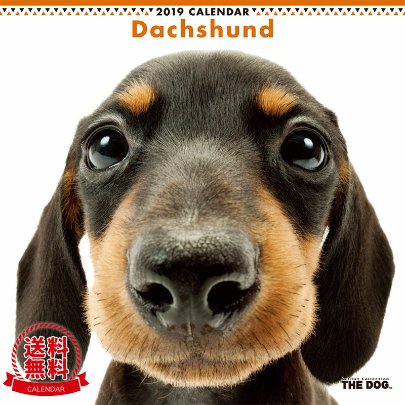【送料無料】【あす楽】THE DOG 2019年 カレンダー ダックスフンド
