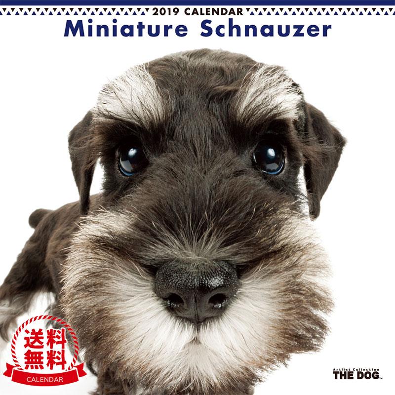【送料無料】【あす楽】THE DOG 2019年 カレンダー ミニチュアシュナウザー