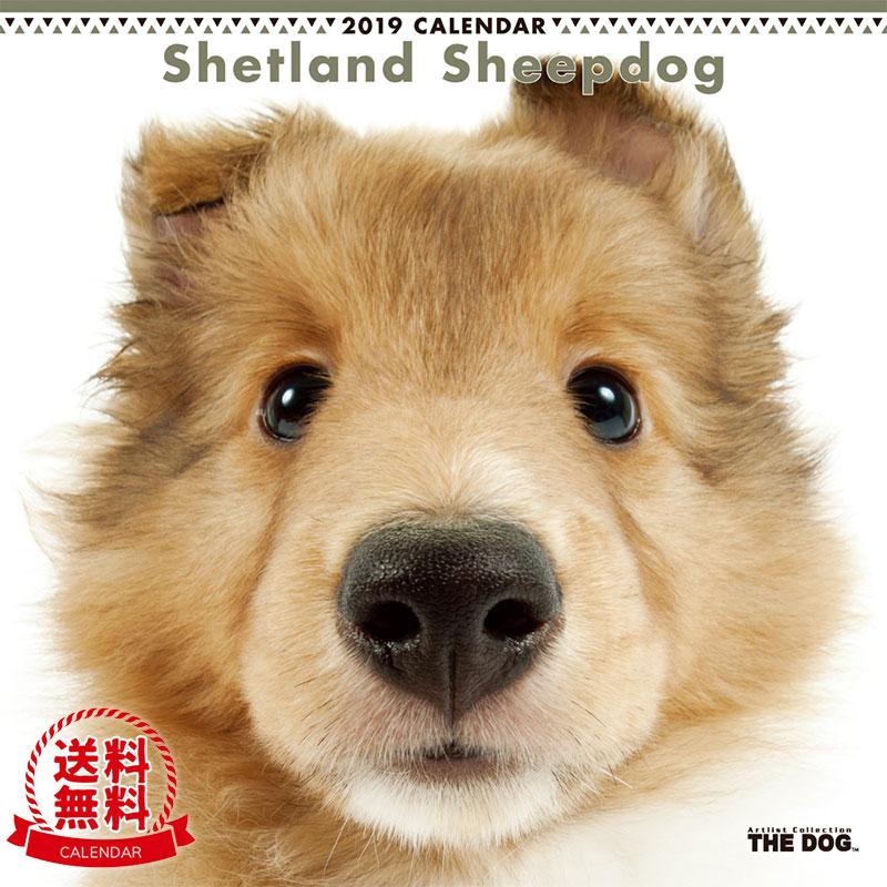 【送料無料】【あす楽】THE DOG 2019年 カレンダー シェットランドシープドッグ