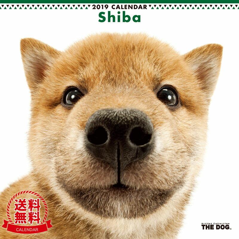 【送料無料】【あす楽】THE DOG 2019年 カレンダー 柴(シバ)