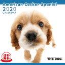 【送料無料】【あす楽】THE DOG 2020年 カレンダー アメリカン・コッカー・スパニエル[犬/ドッグ/ペット/calendar/令和/壁掛け]