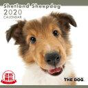 【送料無料】【あす楽】THE DOG 2020年 カレンダー シェットランドシープドッグ[犬/ドッグ/ペット/calendar/令和…