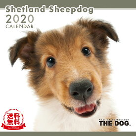 【送料無料】【あす楽】THE DOG 2020年 カレンダー シェットランドシープドッグ[犬/ドッグ/ペット/calendar/令和/壁掛け]