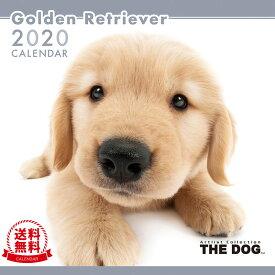 【送料無料】【あす楽】THE DOG 2020年 カレンダー ゴールデンレトリーバー[犬/ドッグ/ペット/calendar/令和/壁掛け]