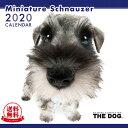 【送料無料】【あす楽】THE DOG 2020年 カレンダー ミニチュアシュナウザー[犬/ドッグ/ペット/calendar/令和/壁…