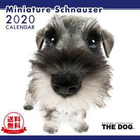 【送料無料】【あす楽】THE DOG 2020年 カレンダー ミニチュアシュナウザー[犬/ドッグ/ペット/calendar/令和/壁掛け]