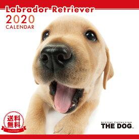 【送料無料】【あす楽】THE DOG 2020年 カレンダー ラブラドールレトリーバー[犬/ドッグ/ペット/calendar/令和/壁掛け]