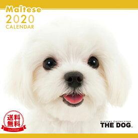 【送料無料】【あす楽】THE DOG 2020年 カレンダー マルチーズ[犬/ドッグ/ペット/calendar/令和/壁掛け]