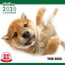 【送料無料】【あす楽】THE DOG 2020年 カレンダー 柴(シバ)[犬/ドッグ/ペット/calendar/令和/壁掛け]