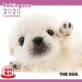 【送料無料】【あす楽】THE DOG 2020年 カレンダー ペキニーズ[犬/ドッグ/ペット/calendar/令和/壁掛け]