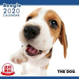 【送料無料】【あす楽】THE DOG 2020年 カレンダー ビーグル[犬/ドッグ/ペット/calendar/令和/壁掛け]
