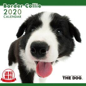 【送料無料】THE DOG 2020年 カレンダー ボーダーコリー[犬/ドッグ/ペット/calendar/令和/壁掛け]