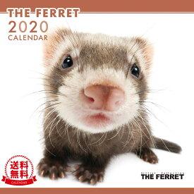 【送料無料】【あす楽】THE FERRET(フェレット) 2020年 カレンダー[動物/ペット/calendar/令和/壁掛け]