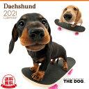 【送料無料】THE DOG 2021年 カレンダー ダックスフンド[犬/ドッグ/ペット/calendar/令和/壁掛け]