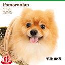 【送料無料】THE DOG 2021年 カレンダー ポメラニアン[犬/ドッグ/ペット/calendar/令和/壁掛け]