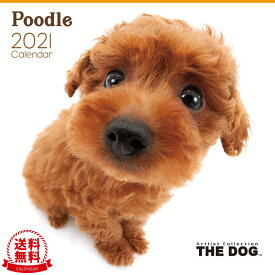 【送料無料】THE DOG 2021年 カレンダー プードル[犬/ドッグ/ペット/calendar/令和/壁掛け]