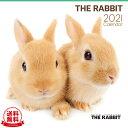 【送料無料】THE RABBIT(ラビット) 2021年 カレンダー[うさぎ/ウサギ/兎/ペット/calendar/令和/壁掛け]