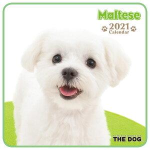 【メール便可】THE DOG 2021年 ミニカレンダー マルチーズ[犬/ドッグ/ペット/calendar/令和/壁掛け]
