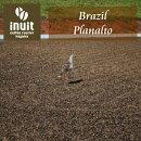 シングルオリジン「ブラジルプラナウトナチュラル」
