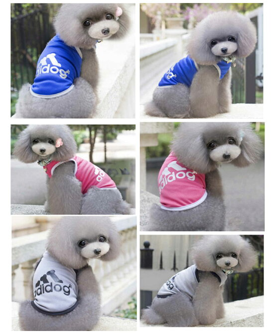 犬服タンクトップアディドッグメッシュ春夏小型犬ドッグウェアadidog