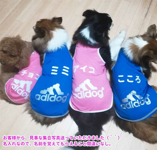 犬服タンクトップアディドッグメッシュ春夏小型犬adidog犬屋