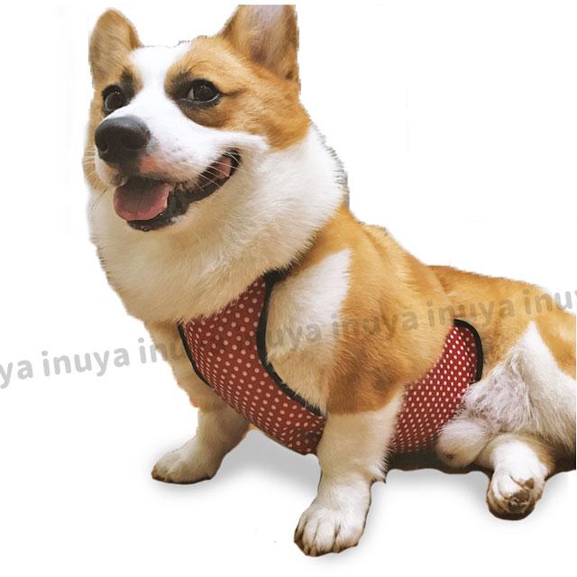 犬 レインコート 水玉 中型犬 コーギー 防水 泥はね どろはね 汚れ 防止 エプロン 雨 雪 ドッグウェア 簡単 雨具 カッパ【あす楽】