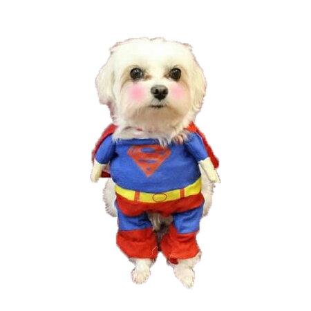 コスプレ・コスチューム・なりきり・ドッグウェア・犬服・洋服・スーパーマン・ビションフリーゼ