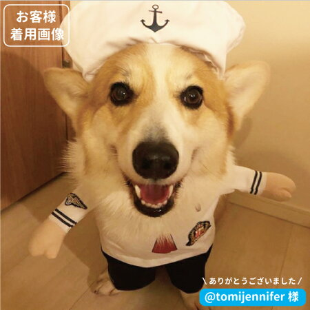 犬服コスプレなりきりマリンルック海兵さん2足立ちコスチューム衣装仮装着ぐるみ小型犬ダックストイプードルチワワポメラニアンセールペット洋服