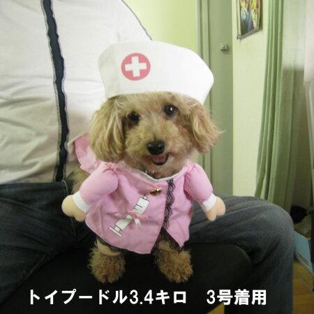 コスプレ・コスチューム・なりきり・ドッグウェア・犬服・洋服・ナース・ドクター・医者