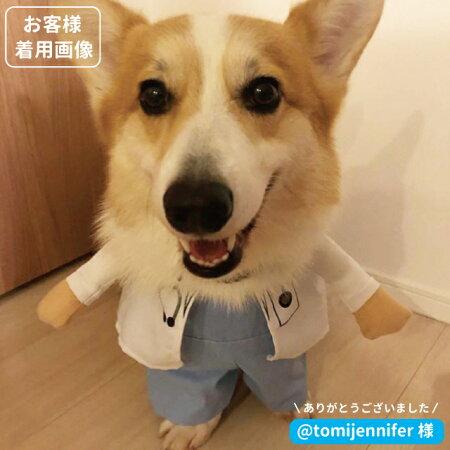犬服コスプレなりきりドクターorナース2足歩行2足歩行(変身仮装ナース)小型犬ダックストイプードルチワワポメラニアンハロウィンバラエティーペットグッズ